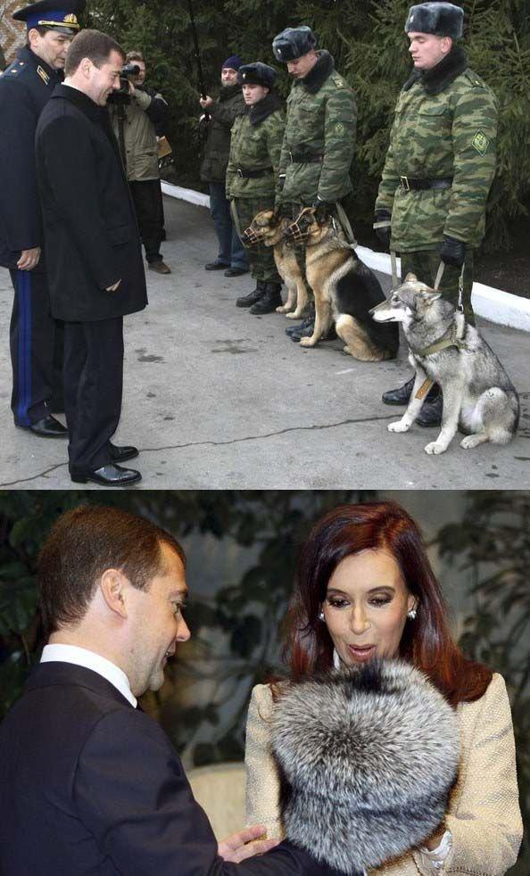 Prezydent lubi wilki
