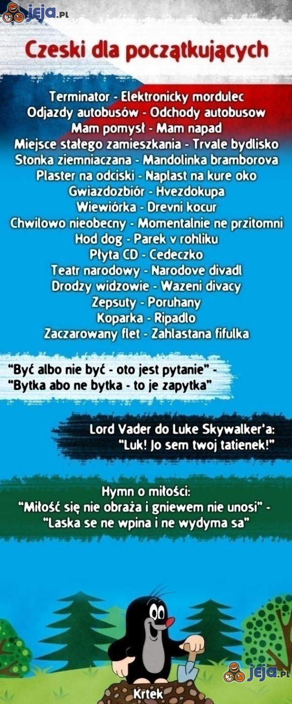 Język czeski dla początkujących