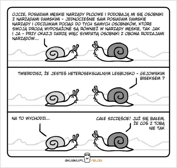 Problemy ślimaków