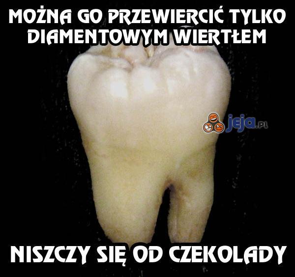 Ząb-sku*wiel