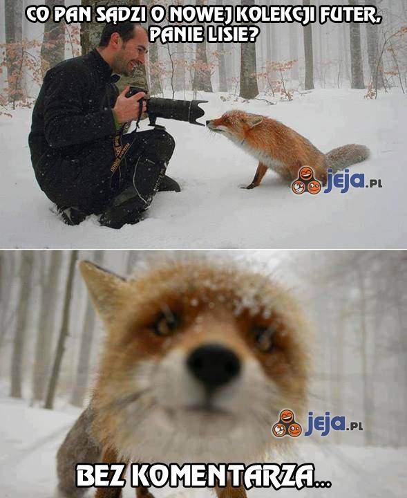 Paparazzi i lis