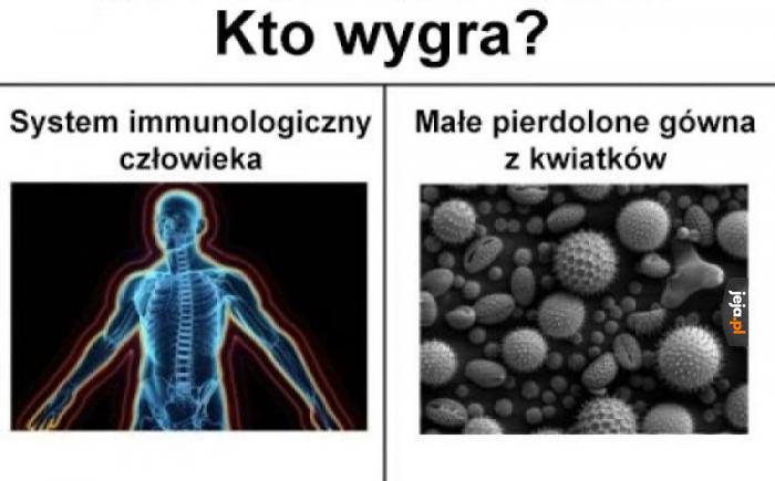 Alergia to katorga