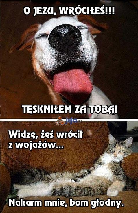 Gdyby zwierzęta umiały mówić