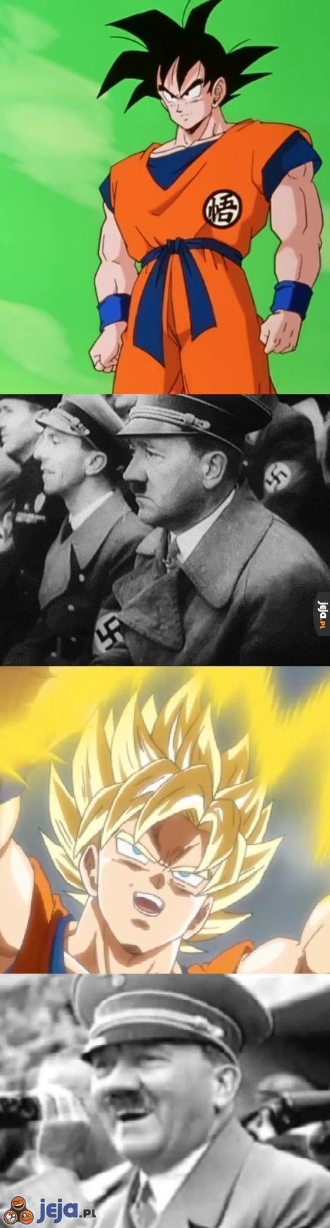 Wzór rasy aryjskiej