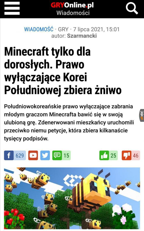 Minecraft ma problem w Korei