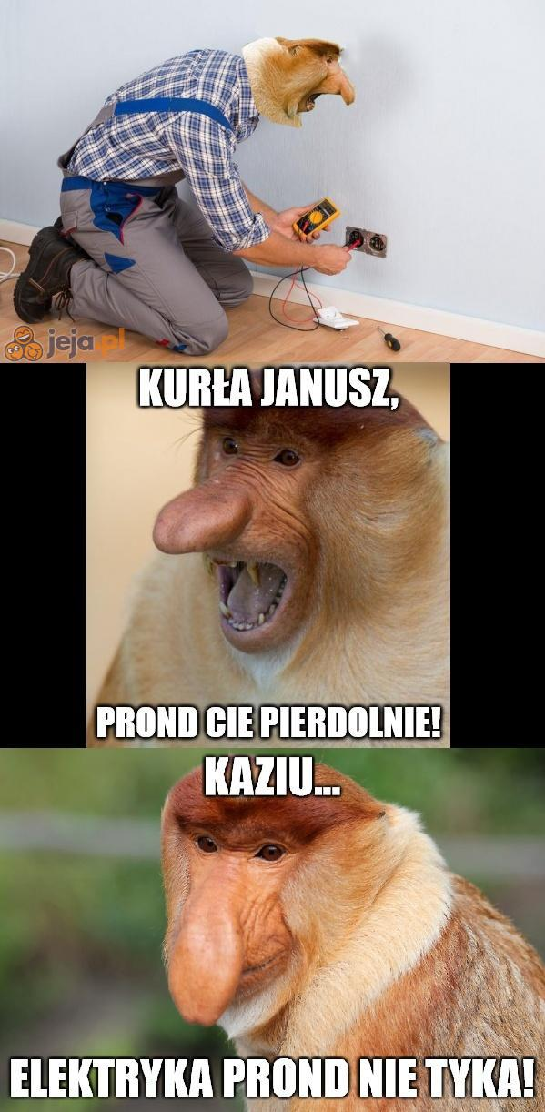 Janusz fachowiec