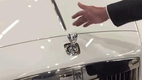 Zabezpieczenie przed kradzieżą emblematu