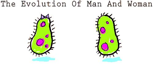 Ewolucja faceta i kobiety