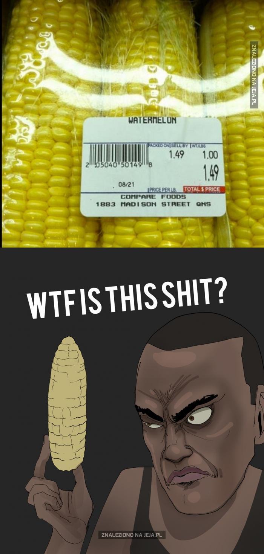 Kłamstwo!