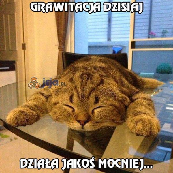 Grawitacja działa dzisiaj jakoś mocniej...