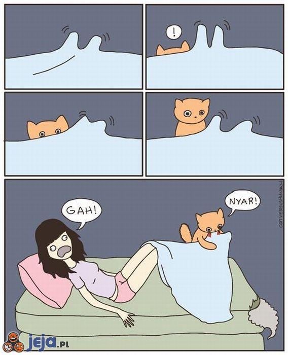 Wystające stopy vs kot