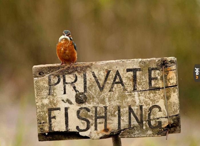 Prywatne łowisko