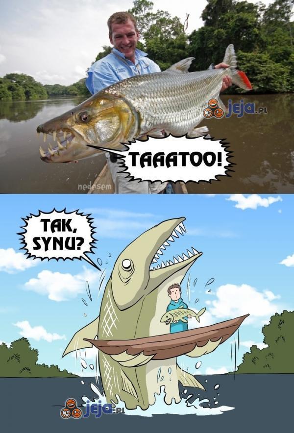 Bo zawsze znajdzie się większa ryba...