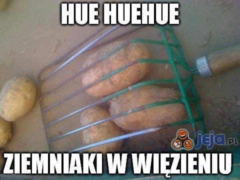 Ziemniaki w więzieniu