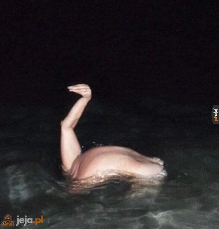 Potwór z Loch Ness - zdjęcie utajnione