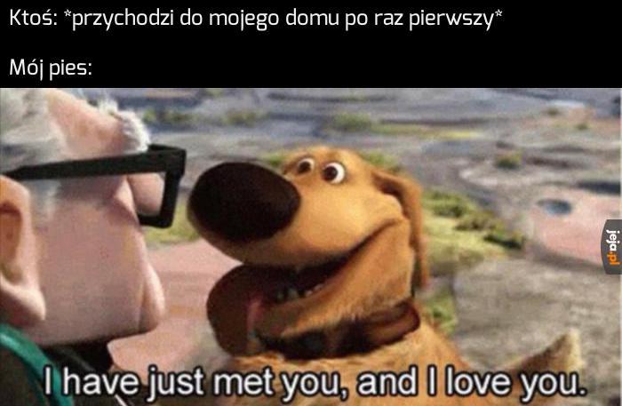 Mój piesiu kocha wszystkich!