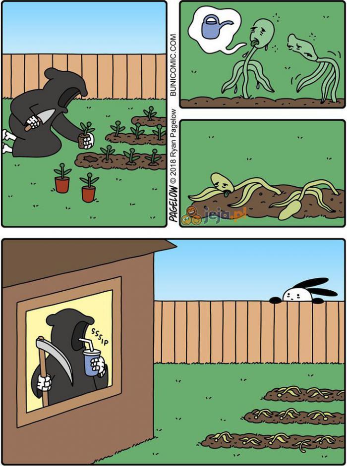 Ogródek śmierci