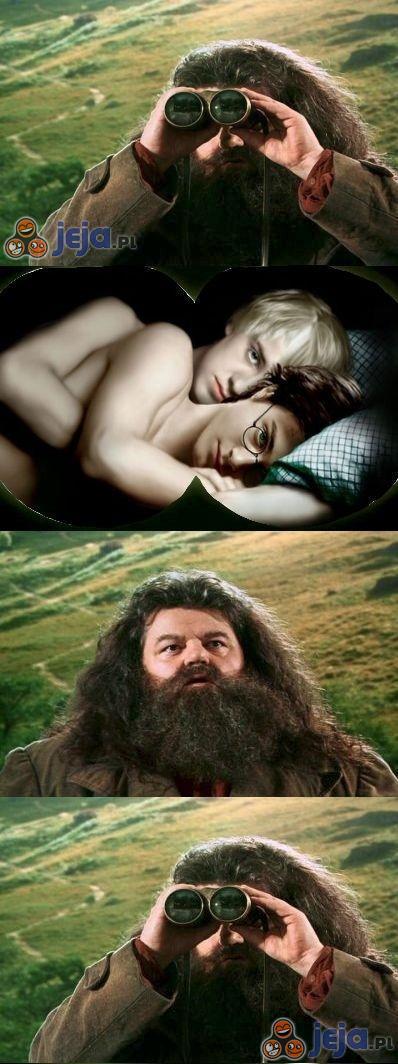 Och, Harry...