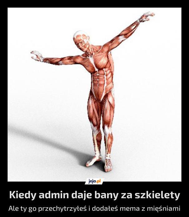 Nie za szkielety, tylko za spam, ale mięśnie zacne