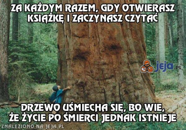 Pociesz drzewo, czytaj książki!