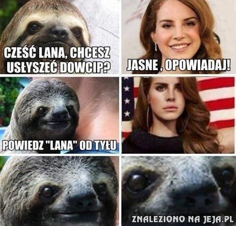 Leniwiec i Lana