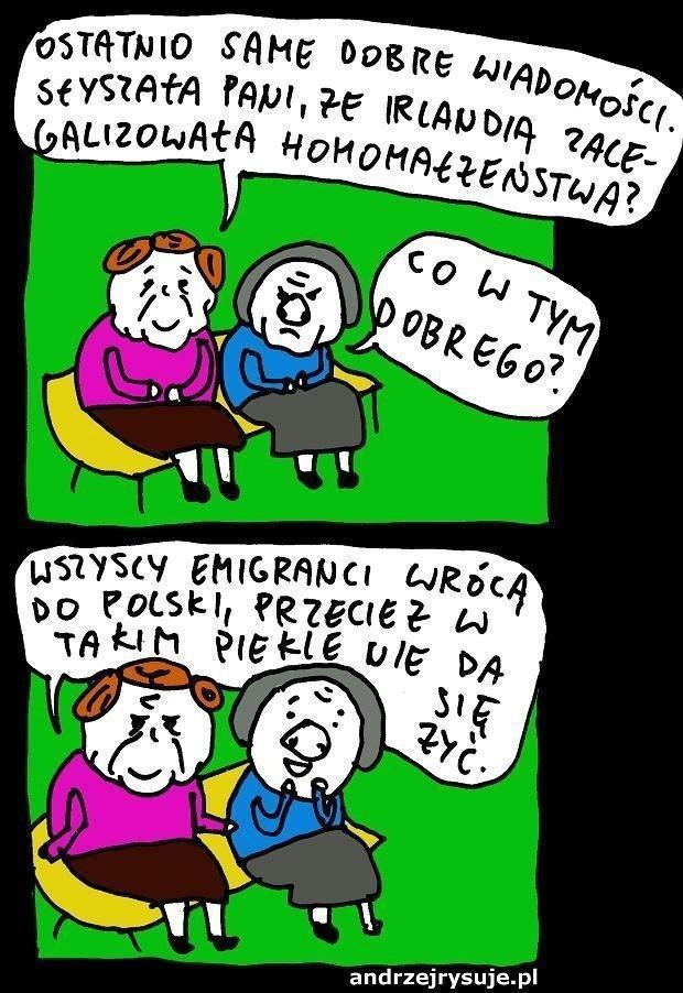 Homomałżeństwa w Irlandii