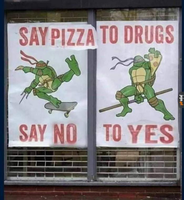 Żółwie ninja bawią i uczą