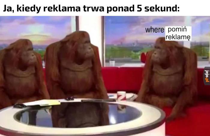 YouTube dziś