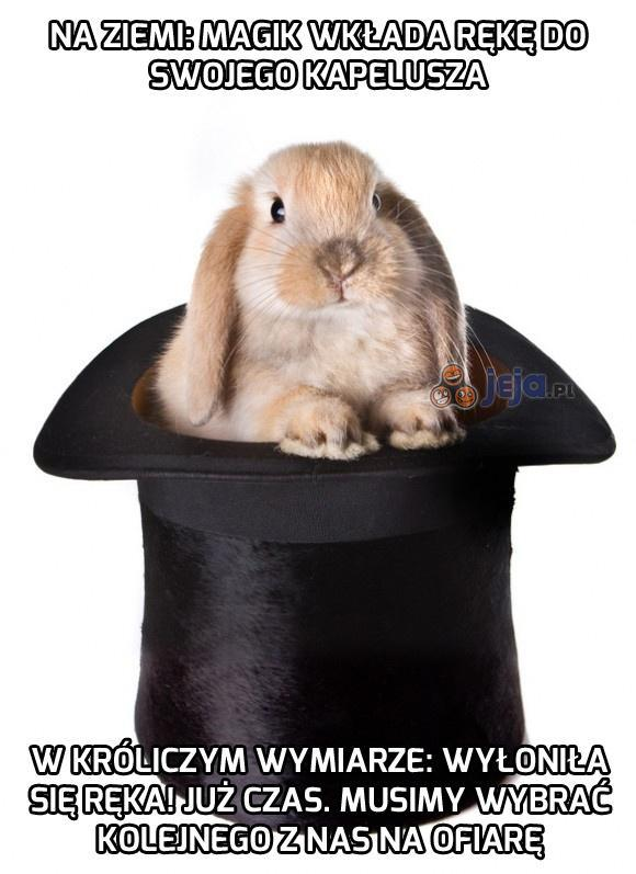 Jak działa trik z wyciąganiem królika z kapelusza