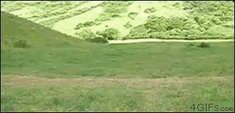 Pojedynek rowerowy