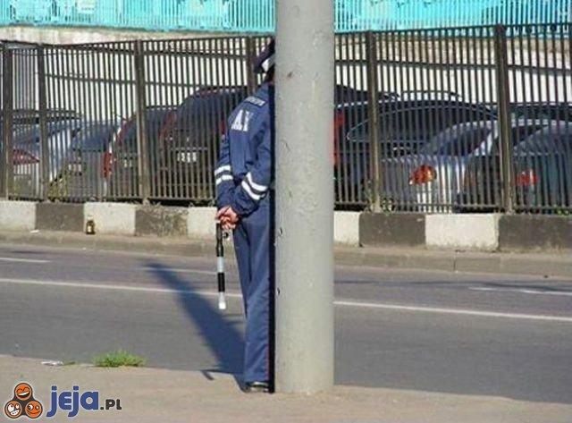 Policja słupowa
