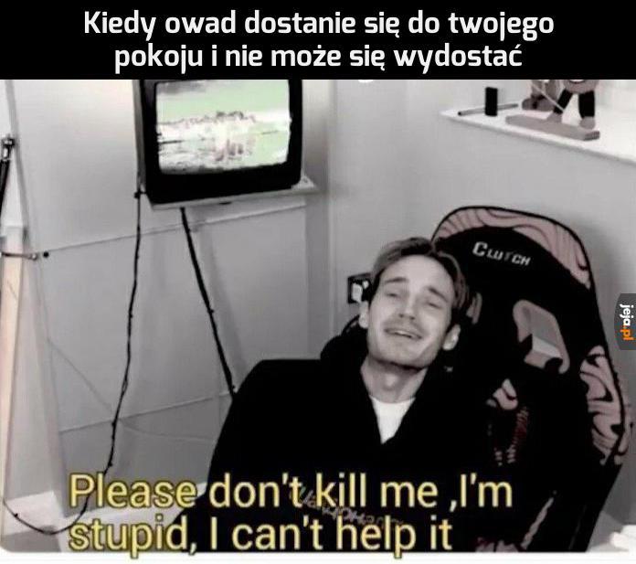 Nie zabijaj mnie za głupotę!