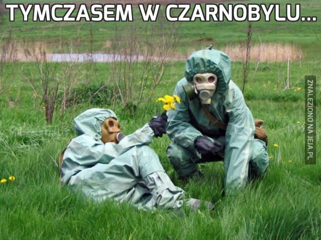 Tymczasem w Czarnobylu...