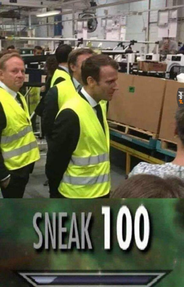 Niczym kameleon