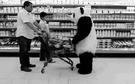 Panda ma zły dzień
