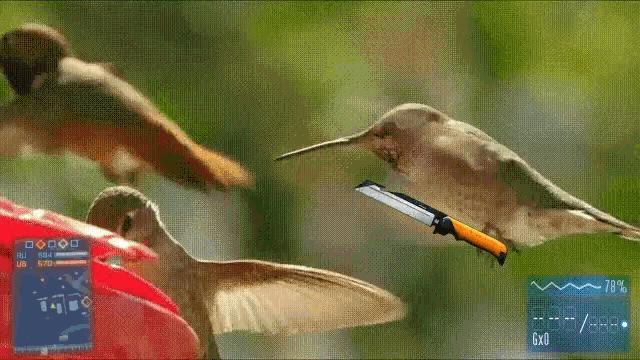 Battlefield w przyrodzie