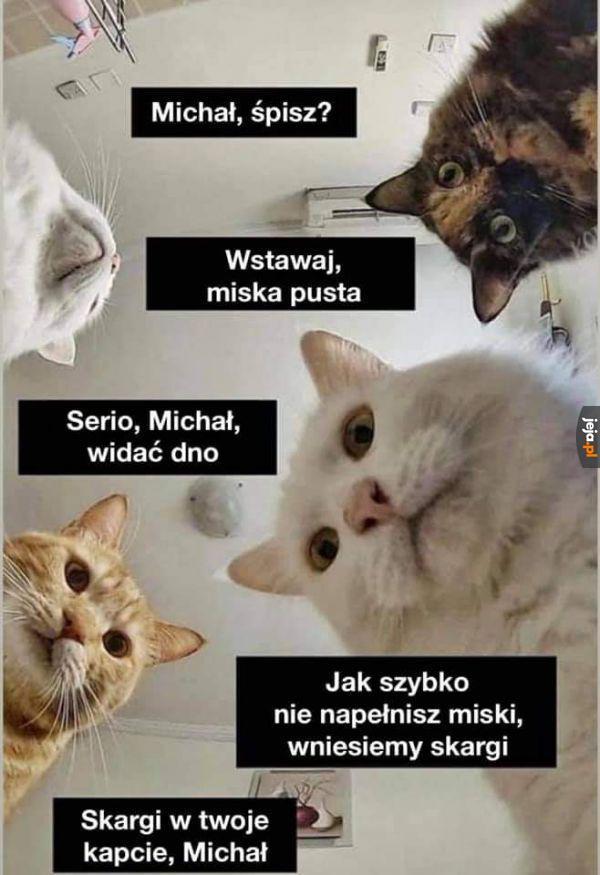 Lepiej wstawaj, Michale