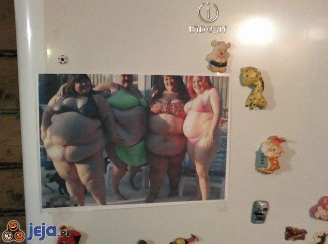 Zdjęcie na lodówce