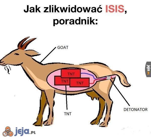 Walka z ISIS