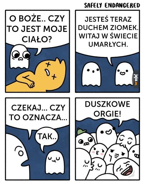 Witaj w świecie duchów!