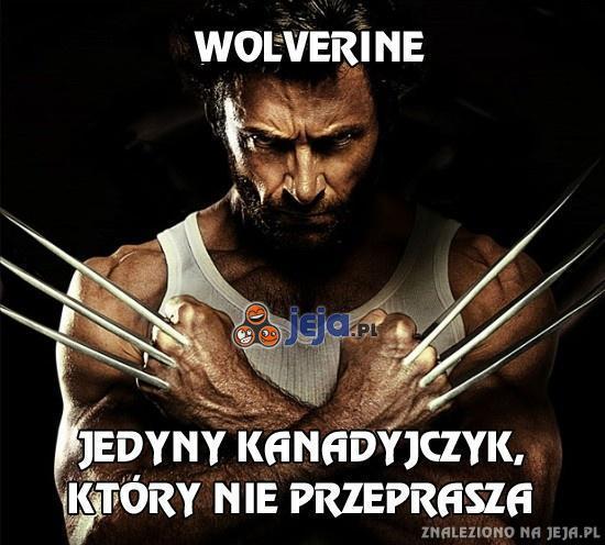 Wolverine - nietypowy Kanadyjczyk