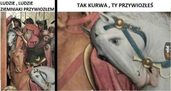 Oburzony koń