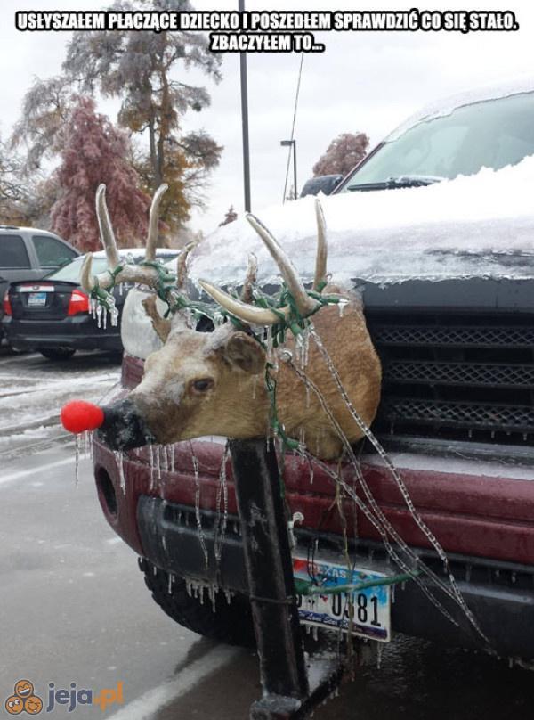 Biedny Rudolf...