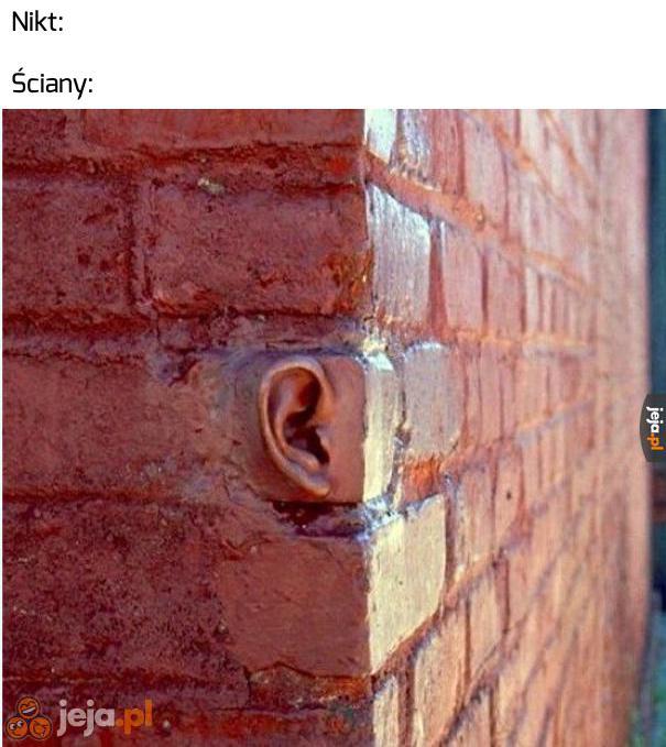 Uszy mają ściany