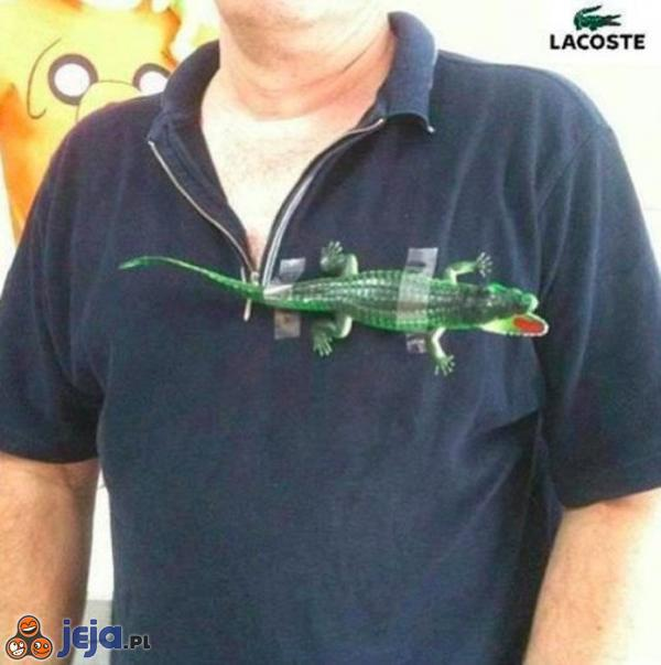 Prawie firmowa koszulka Lacoste