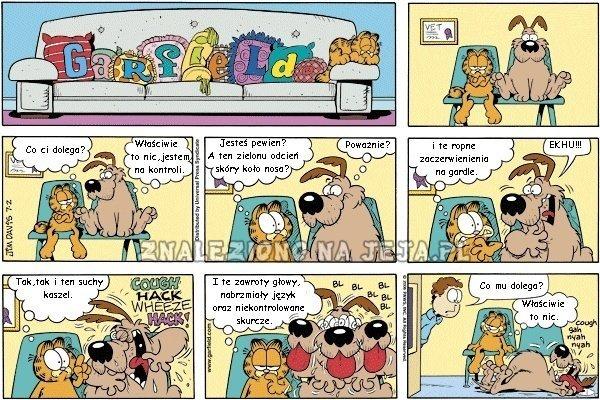 Garfield: W kolejce do weterynarza