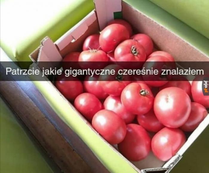 Przecież to są jabłka
