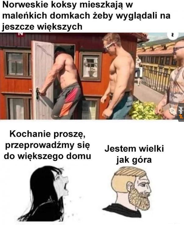 POTEZNY NORWEG