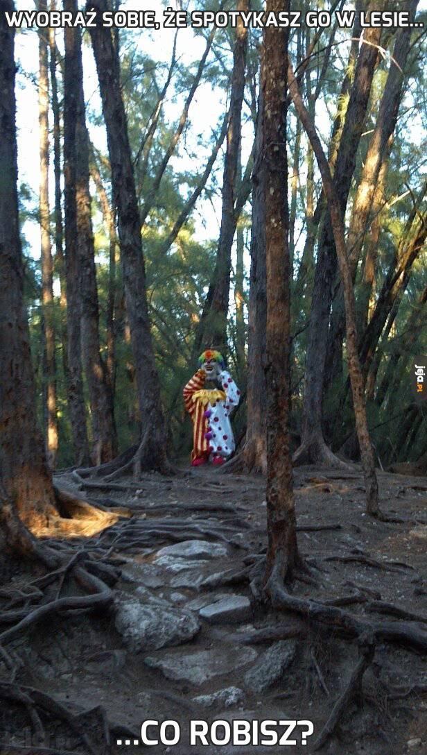 Wyobraź sobie, że spotykasz go w lesie...