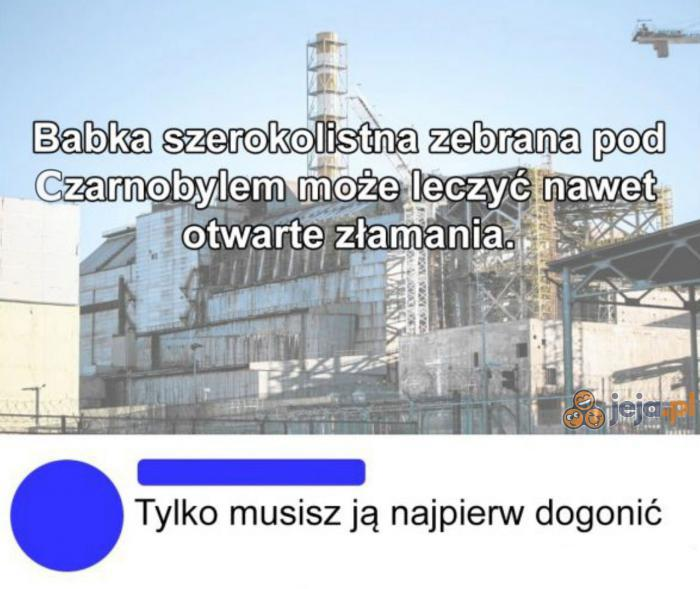 Babka z Czarnobyla